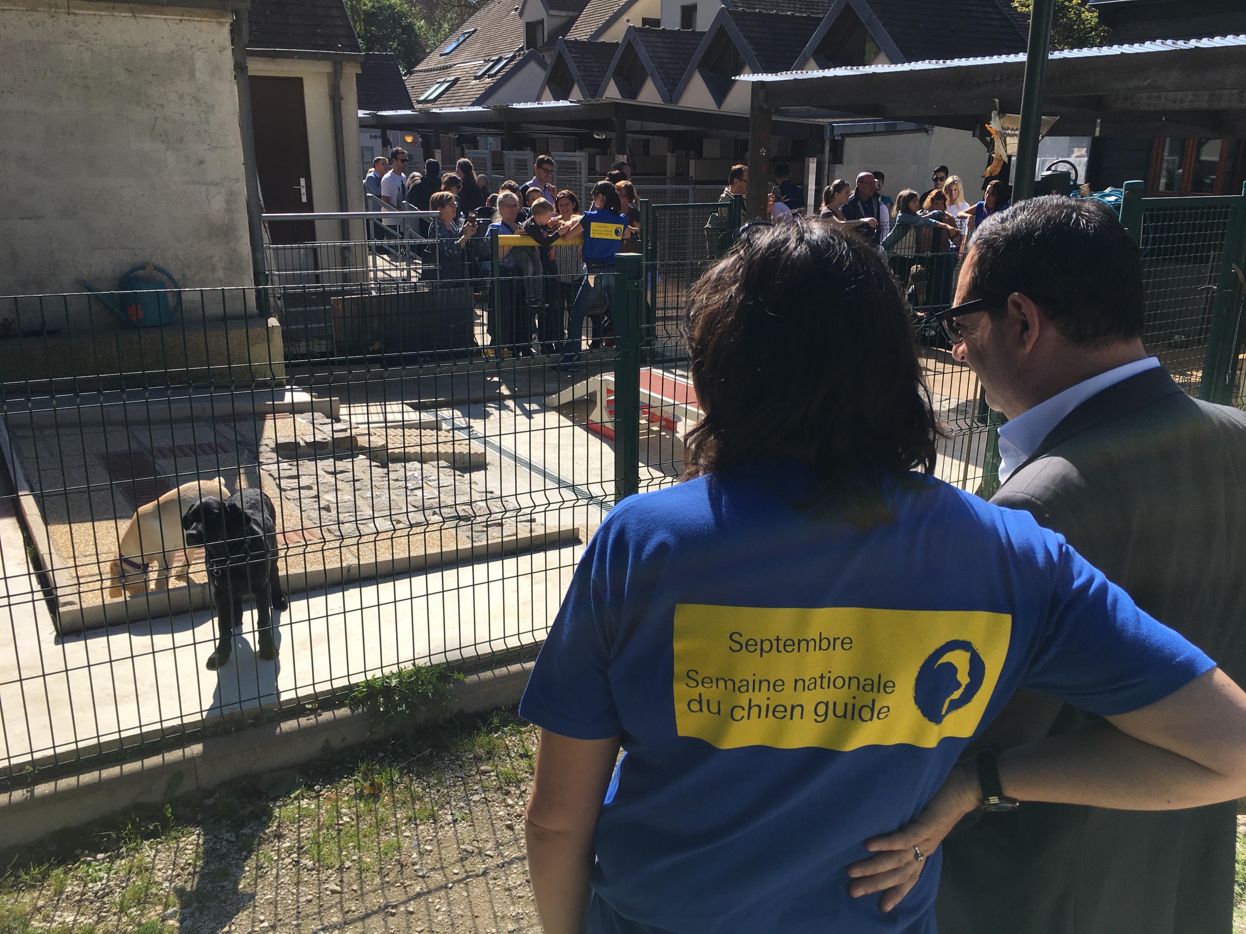 A la Journée Portes Ouvertes de l'École de Chiens Guides de Paris