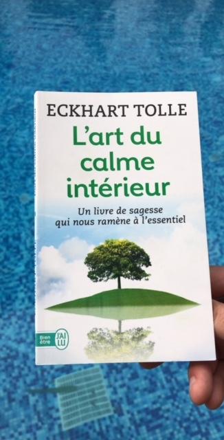 LIVRE - « L'art du calme intérieur » de Eckhart Tolle, un peu de sagesse dans ce monde si violent