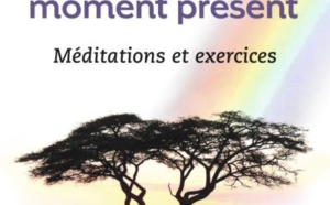 LIVRE - « Mettre en pratique le pouvoir du moment présent » de Eckhart Tolle, un livre pour être plus « sage »?